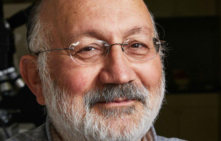 Professor Pega Hrnjak