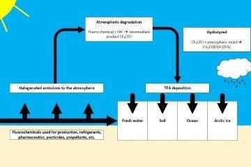 Kreislauf_TFA_Bildung