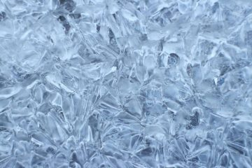The system serves a chicken processing and cold storage facility, including by making flake ice.